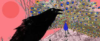 crow and peackock story