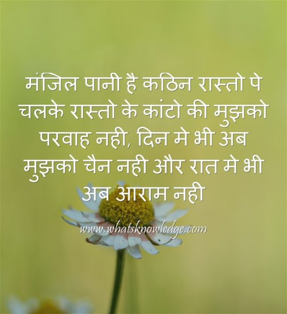 motivational shayri